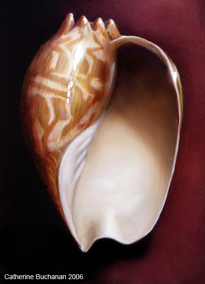 catherine_buchanan_shell_oil_painting