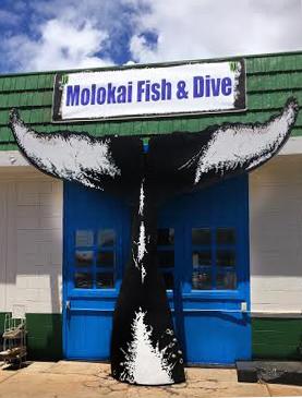 Molokai for Molokai fish and dive